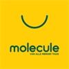 Molecule Vichte